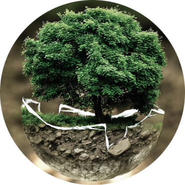 sfera-home